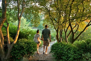 Why Heel Pain Treatment Can Be a Walk in the Park